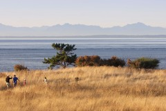 A family explores East Point Park on Saturna Island, with the Coast Mountains in the distance.