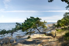 The eastern shore of Gabriola Island