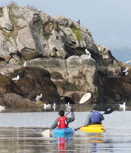 Kayakers enjoy the spectacular scenery of Gulf Islands waters