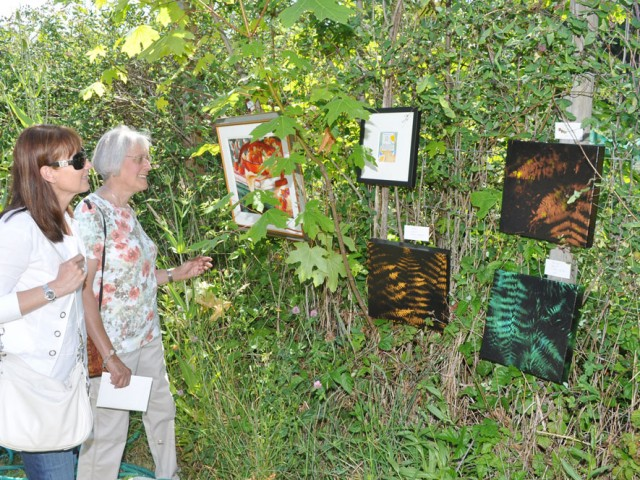 pender-art-off-the-fence