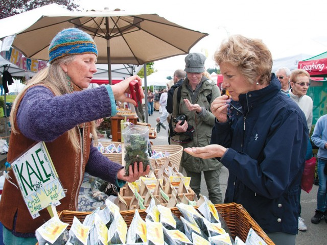 kale chips at Salt Spring market